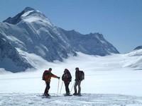 Grandiose Gletscherrouten im Berner Oberland